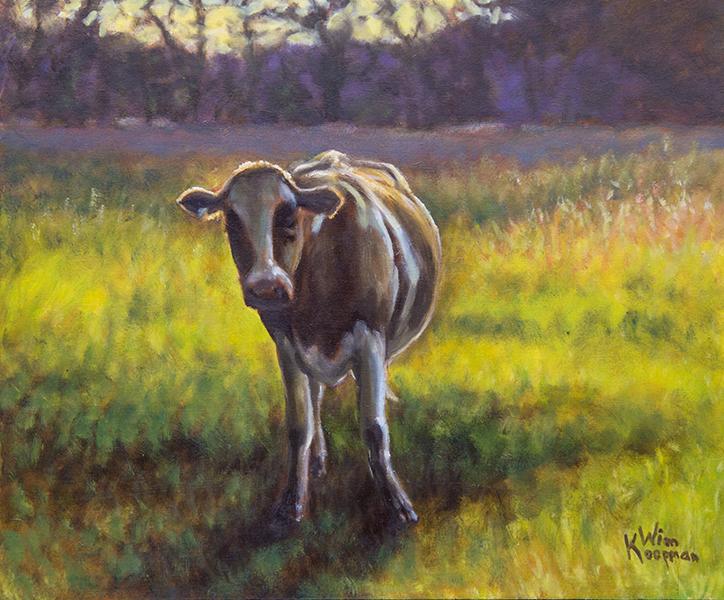 Koe in Avondlicht
