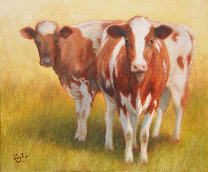Roodbonte Koeien